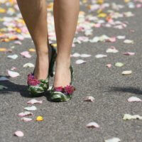 Blumen Schuhe Auf Rosen