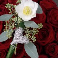 Trauer Rote Rosen Christrose